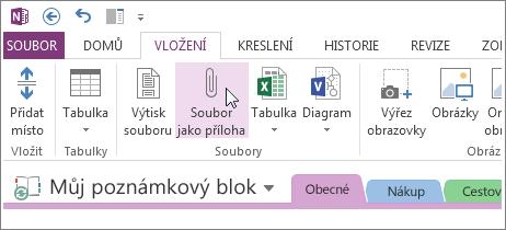 Vložte přiložený soubor tak, abyste měli kopii souborů v OneNotu.