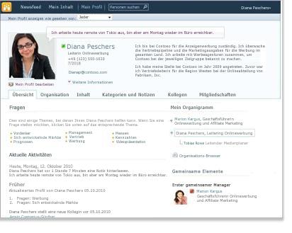 Profil 'Meine Website'