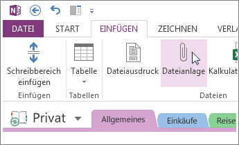 Fügen Sie eine Dateianlage ein, damit Sie in OneNote über eine Kopie von Dateien verfügen.