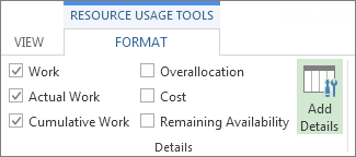 Resource Usage Tools Format tab, Add Details button