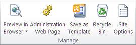 SharePoint Designer 2010 illustration