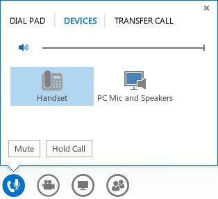 Screenshot of audio options