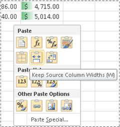 Options on Paste Preview menu