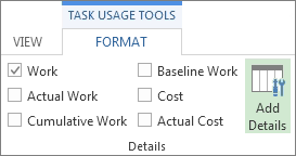 Task Usage Tools Format tab, Add Details button