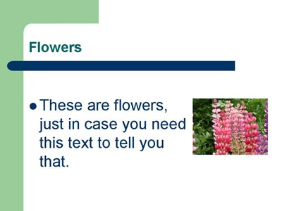 flowers and text