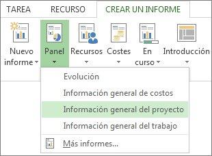 Menú Panel de información de la pestaña Informe
