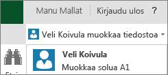 Usea käsittelijä Excel Onlinessa