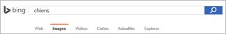 Requête entrée dans la zone de recherche d'image Bing