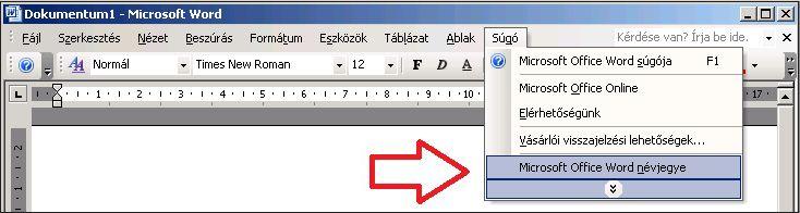A Word 2003 súgója, Névjegy