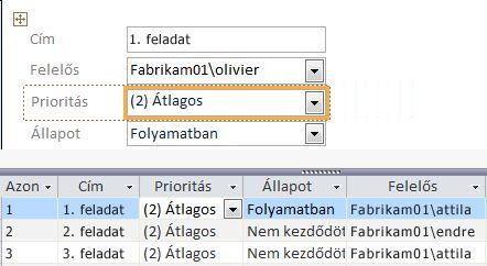 Nézet létrehozása a Microsoft Access programmal
