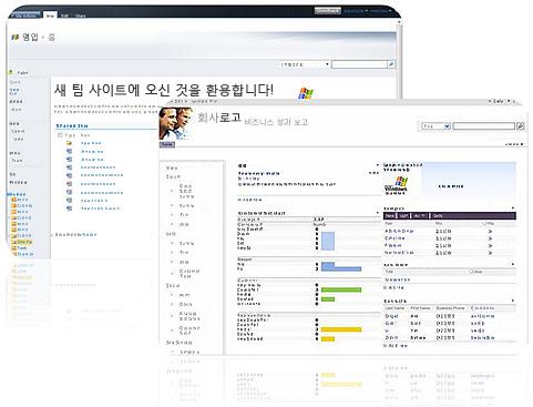 SharePoint Designer 2010을 사용하여 만들 수 있는 사이트