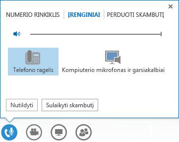 Garsinių duomenų skambučio valdiklių ekrano nuotrauka