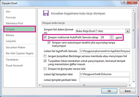 Opsyen Simpan dalam Opsyen Excel