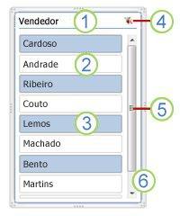 Elementos de segmentação de dados de Tabela Dinâmica