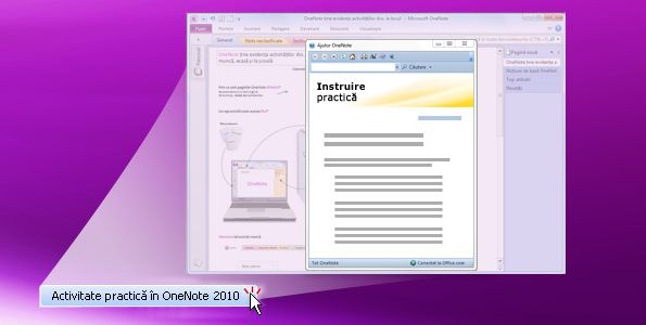 Activitate practică OneNote 2010