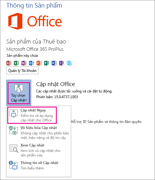 Kiểm tra cập nhật Office trong Word 2013 theo cách thủ công