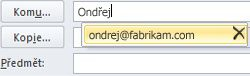 Seznam funkce Automatické dokončování s ikonou pro odstranění
