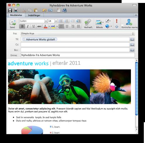 Outlook viser mail i RTF-format