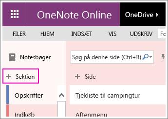 Skærmbillede af, hvordan du opretter et nyt afsnit i OneNote Online.