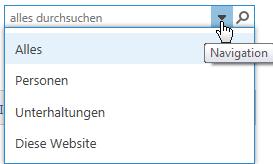 Screenshot des Suchfelds