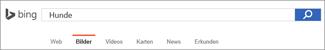 """In das Feld """"Bing-Bildersuche"""" eingegebene Abfrage"""