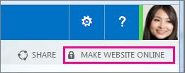 Make Website Online