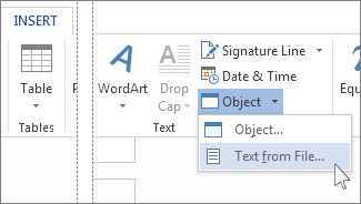 Object menu in the Text group