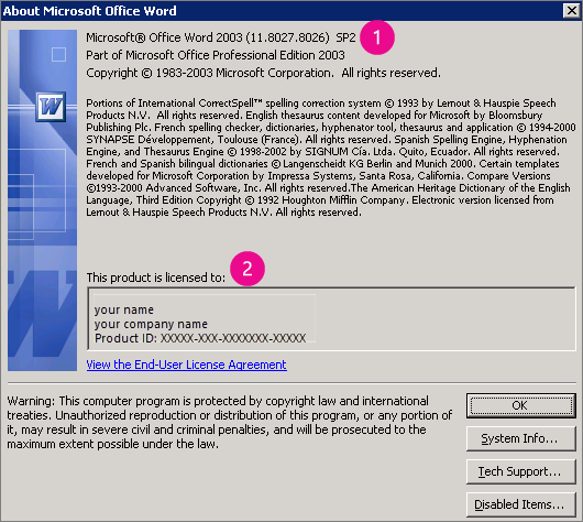 About Microsoft Office Word 2003 window