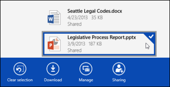 A file selected in OneDrive for Business