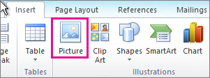 Office 2010 Insert Picture