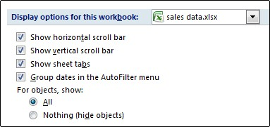 Show sheet tabs check box in Excel Options dialog box