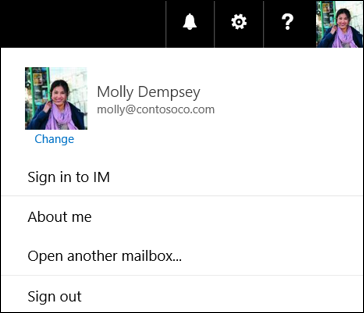 Sign in to IM