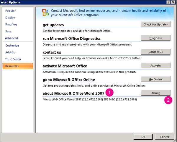 Resources window under Word Options in Word 2007