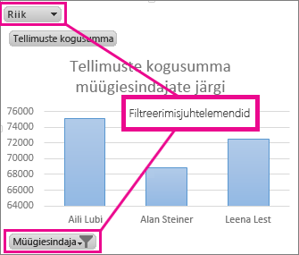 PivotChart-liigenddiagramm ja filtreerimisjuhtelemendid