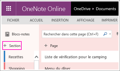 Capture d'écran montrant la création d'une section dans OneNoteOnline