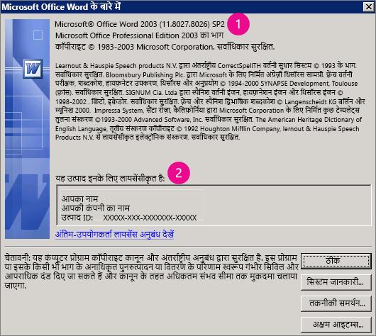 Microsoft Office Word 2003 विंडो के बारे में