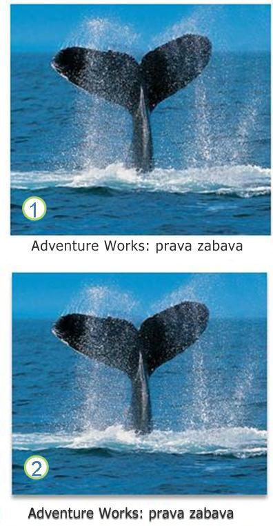 Efekti za tekst i slike