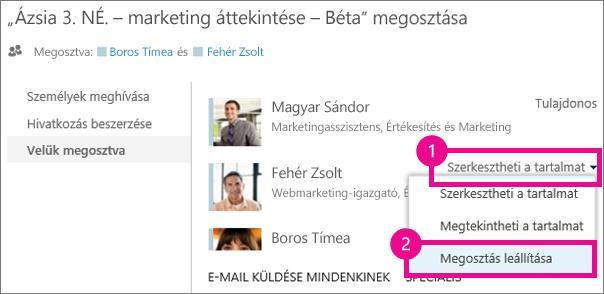 Megosztás leállítása parancs a OneDrive Vállalati verzió Megosztás ablakában