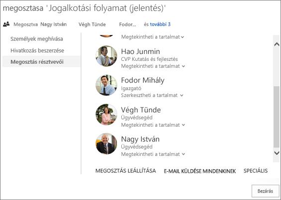 """Képernyőkép a Megosztás párbeszédpanel """"Megosztás résztvevői"""" lapjáról"""