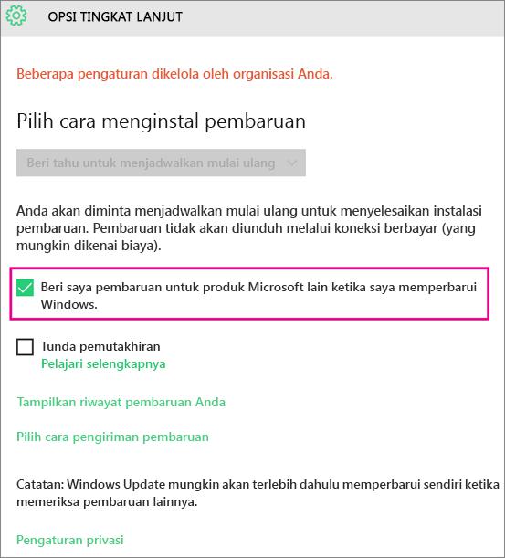 Opsi Lanjutan Pembaruan Windows