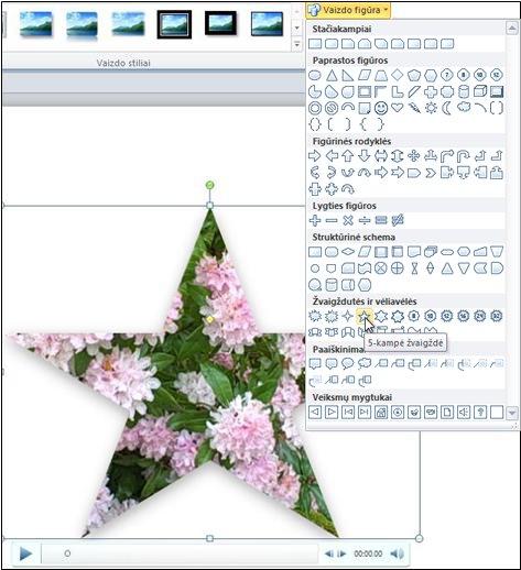 Vaizdo įrašo leidimas figūroje