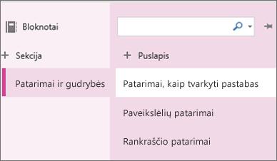"""""""OneNote Online"""" sekcijos ir puslapiai"""
