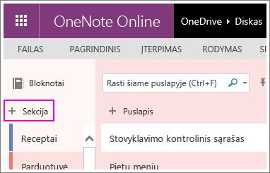 """Naujos sekcijos sukūrimo programa """"OneNote 2016"""" ekrano kopija."""