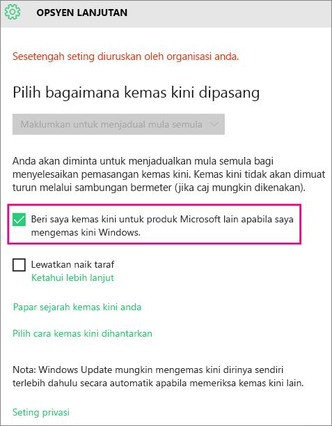 Opsyan Kemas Kini Windows Lanjutan