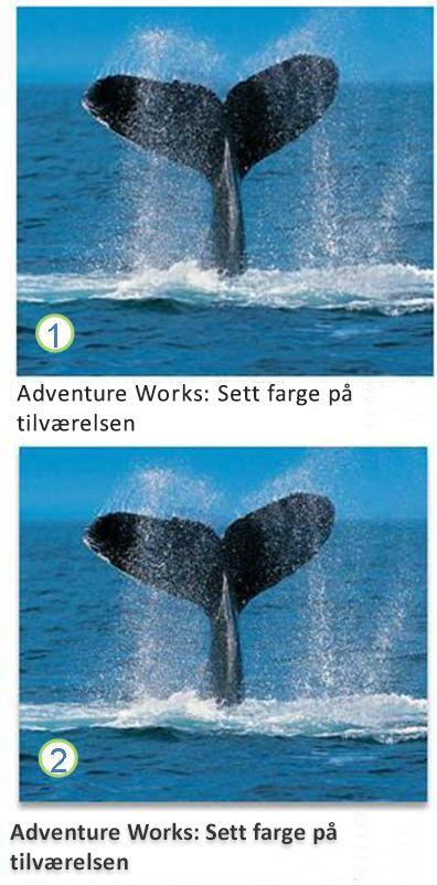 Tekst- og bildeeffekter