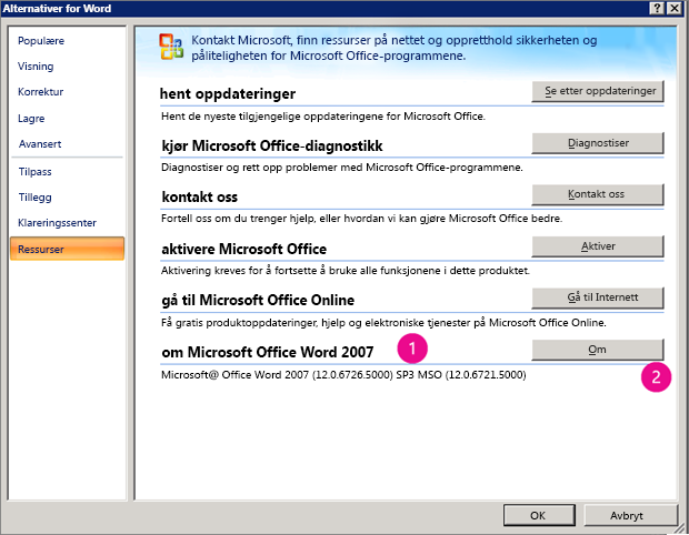 Ressurser-vinduet under Alternativer for Word i Word 2007