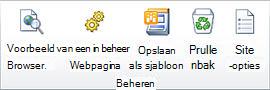 SharePoint Designer 2010-afbeelding