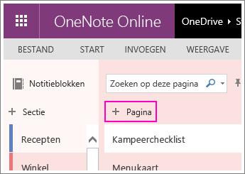 Schermafbeelding van het toevoegen van een pagina in OneNote Online.