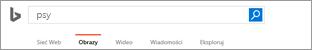 Zapytanie wprowadzone w polu wyszukiwania obrazów Bing
