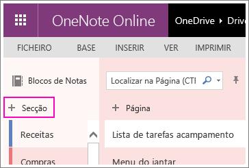 Captura de ecrã de como criar uma nova secção no OneNote Online.
